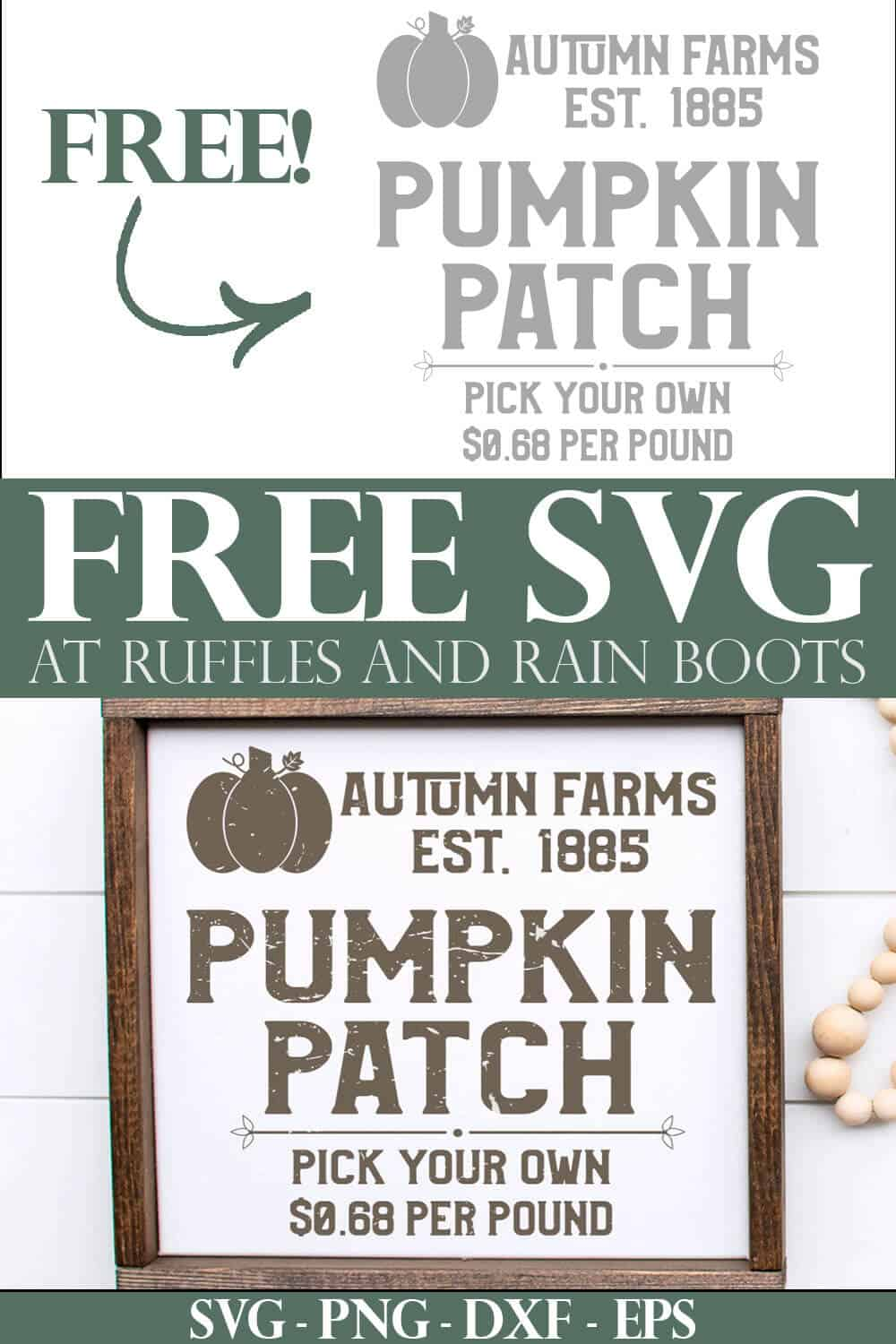 vintage farmhouse square pumpkin patch svg with text which reads free svg at ruffles and rain boots