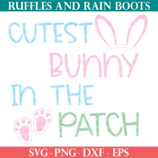 cutest bunny in the patch SVG for Easter