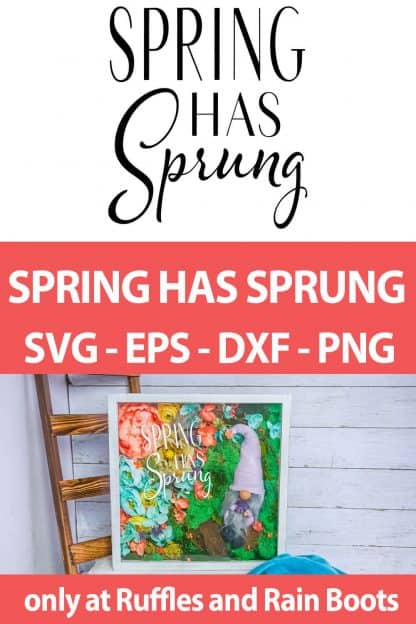 photo collage of cricut or silhouette cut file set Spring Has Sprung with text which reads spring has sprung svg eps dxf png