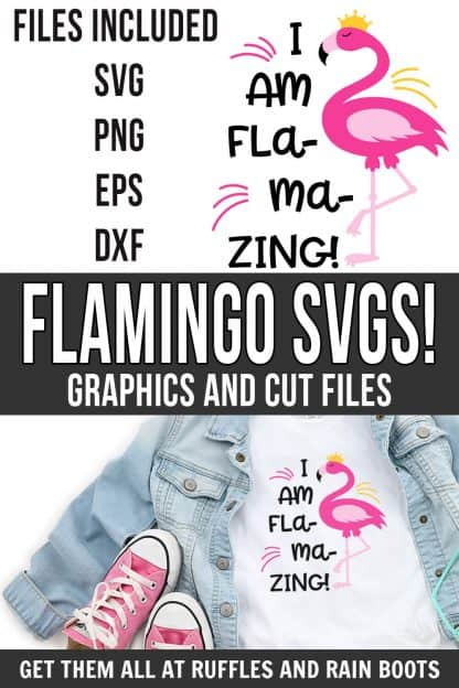 photo collage of I am flamazing flamingo svg clipart and cut files for cricut silhouette with text which reads flamingo svgs! graphics and cut files