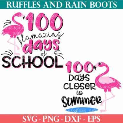 flamingo school svg bundle 100 days of school