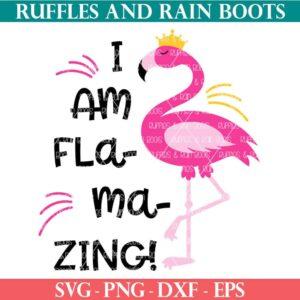 i am flamazing flamingo SVG for Cricut Silhouette
