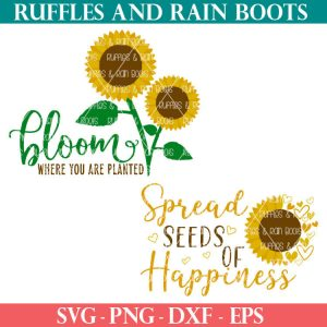 summer Sunflower SVG bundle for summer crafting