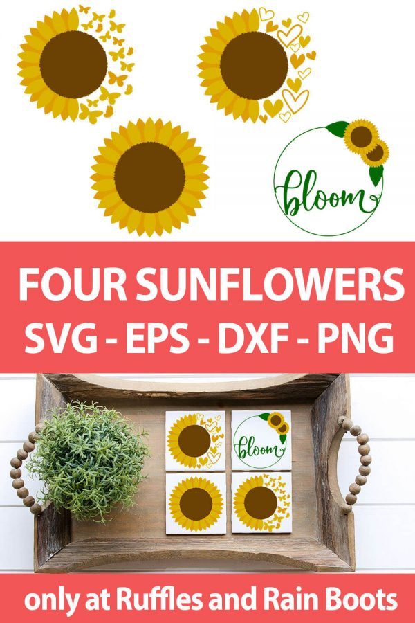 photo collage of Sunflower SVG bundle for cricut or silhouette with text which reads four sunflowers svg eps dxf png