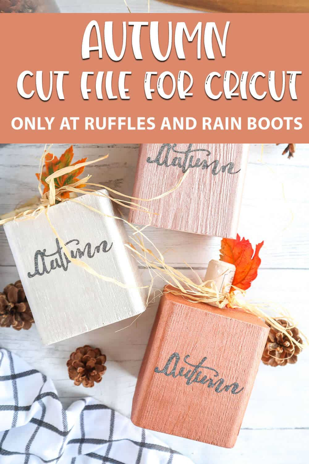 easy-weed fall decor cut file set with text which reads Autumn cut file for cricut