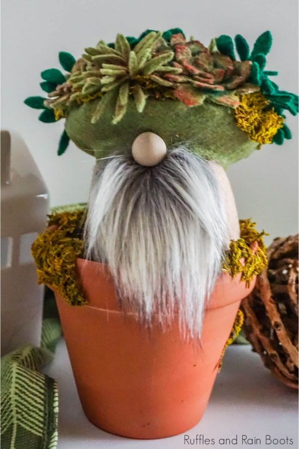 diy succulent gnome in a terra cotta pot