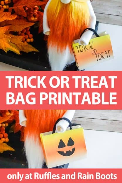 photo collage of candy bag printable for gnomes with text which reads trick or treat bag printable